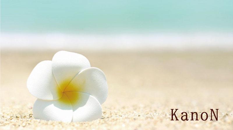 リノハナフラ